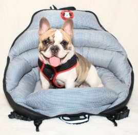 PupSaver Crash Tested Car Seat