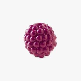 Orbee-Tuff Raspberry
